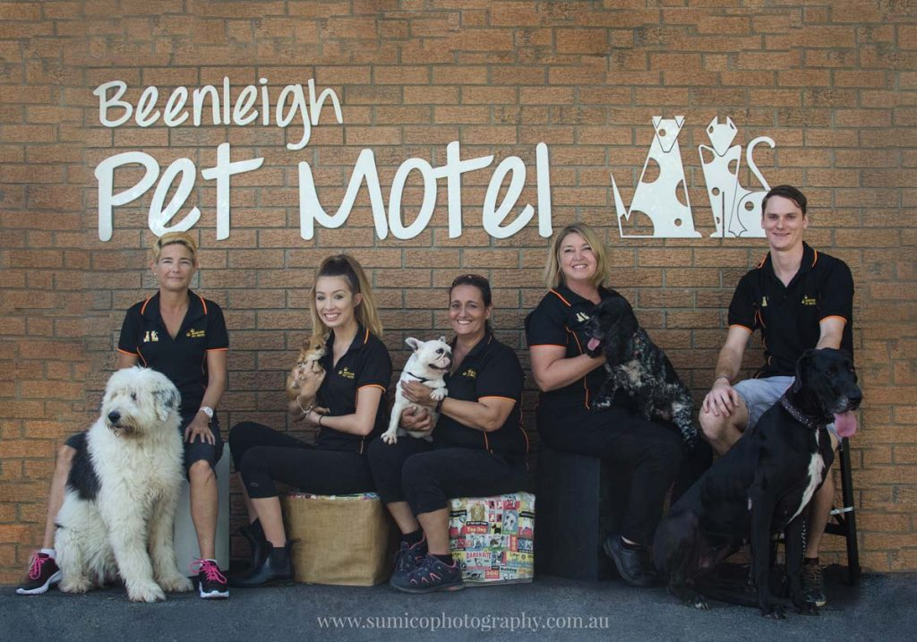 Professional Team Photograph by Brisbane Photographer